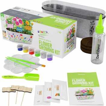 Paint & Plant Flower Growing Kit - Kids Gardening