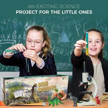 Dig a Dozen Dino Eggs Dig Kit -  12 Unique Dinosaur Filled Eggs - Archaeology Science STEM