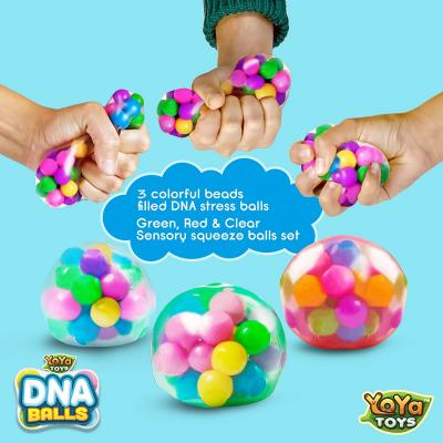 DNA Stress Balls - 3 Pack - Squeezing Stress Relief Ball